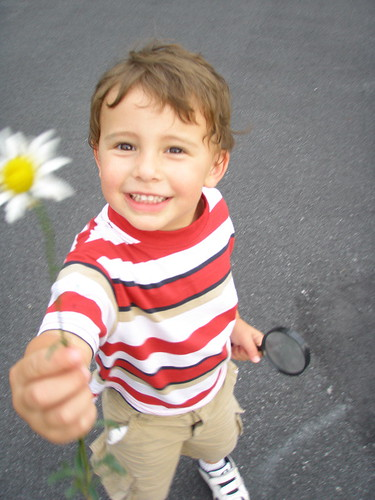 Rollie with Flower