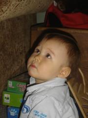 DSC06795.jpg (jojo_1785) Tags: baby young kai december2006