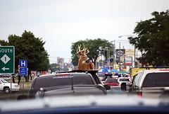 Crazy Hood Ornament (suesue2) Tags: michigan detroit deer highway1 hoodornament royaloak woodwardavenue woodwarddreamcruise letthegoodtimesroll suesue2 amazingmich