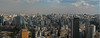Sprawling (shutterBRI) Tags: city travel brazil southamerica brasil skyline canon buildings photography photo saopaulo large powershot metropolis sprawl panaramic 2007 panarama a630 shutterbri brianutesch brianuteschphotography