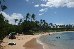 IMG_4138 (webnelly) Tags: beach maui kapalua eos20d