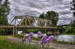 Methow River Bridge (Thad Roan - Bridgepix) Tags: bridge flower water clouds river photo washington image winthrop picture overcast washingtonstate wildflower bridging truss 201006 okanogancounty bridgepixing bridgepix methowriver
