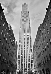 I Can Reach The Sky! (Francesca Caleb) Tags: nyc newyorkcity trees sky blackandwhite bw usa white ny n
