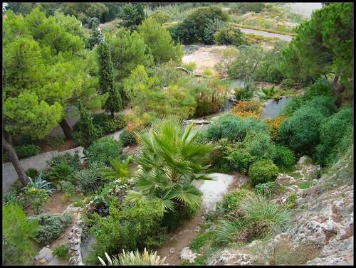 Jardines del Muro