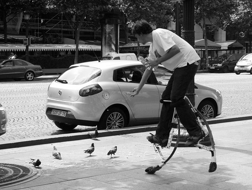 Giving food to pigeons on the stilts on the champs élysés