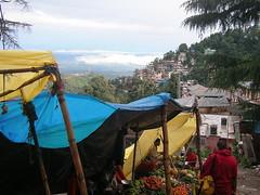 Shopping Monks, McLeod Ganj (thomas-11) Tags: travel india mcleod