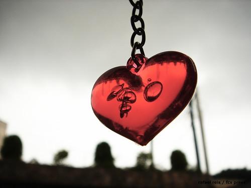 xaveiro coração