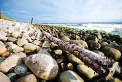 Kseberga I (-Camilla) Tags: sea summer beach rock stone closeup coast skne log sweden rocky wave balticsea alesstenar sterlen sigma1020mm kseberga nikond80