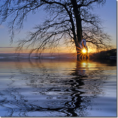 Northumberland Sunstar Flood (jay_kilifi) Tags: winter sun reflection water flood northumberland plugin f22 sunstar hexham naturesfinest theperfectphotographer dajudge
