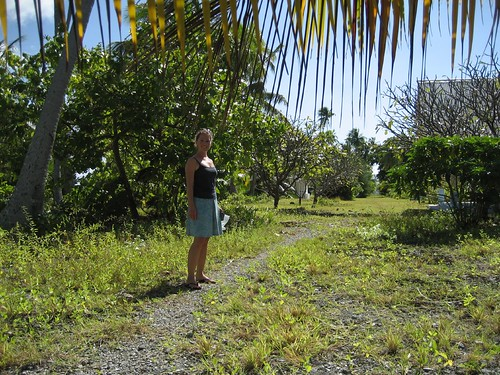 Ginger on ancient road, Tetmanu