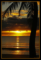 A Touch of Paradise (fotofantasea) Tags: ocean blue light sea sky orange black tree beach nature water silhouette clouds composition sunrise landscape sand waves photographer shoreline australia wallart palm photograph frame queensland coastline ambience missionbeach 197 naturesfinest abigfave aplusphoto apcomp goldenphotographer diamondclassphotographer auselite hollykempe