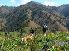 ridge walk to summit
