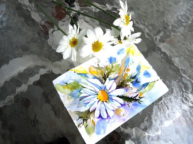 daisy homework best