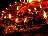 HAPPY DIWALI:) (manumint-[BUSY]) Tags: roof india home colors shopping decoration gifts punjab diwali hinduism festivaloflights friendsfamily firecrackers rangoli oillamps lakshmipuja hoshiarpur goddessofwealth diwaligreetingcard mostimportantindianfestival myfavfestival festivalmonth rowofoillamps redecoratinghome buyingandexchanginggifts celebratingdiwaliduringnight