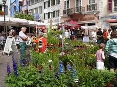 Solothurn Marktplatz