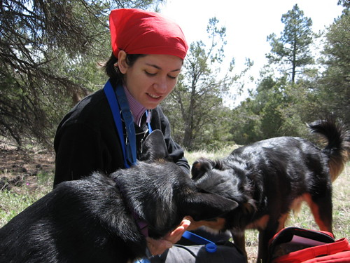 Courtney and Dogs