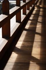 Sunlight Shadow (mrhayata) Tags: shadow sunlight castle japan garden geotagged blog porch 日本 fukuoka kitakyushu 福岡 kokura 福岡県 北九州 mrhayata geo:lat=338844114 geo:lon=1308757014