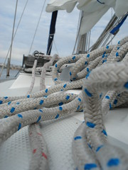 speckled lines (kirinqueen) Tags: sailing sandiego sandiegobay sandiegoharbor