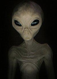 alien120405