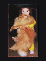Duru (E.L.A) Tags: family hairy orange pet pets cute love girl smile childhood animal kids standing cat wow children fur happy photography persian kid big eyes furry orangecat friend kitten feline soft child looking expression