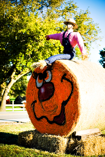 Bales Of Hay Turned Pumpkins!