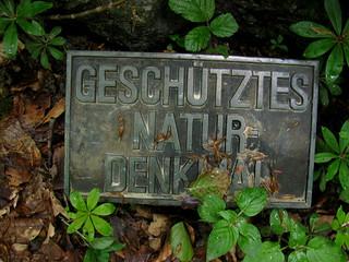 Hinweistafel beim Findling / Erratiker auf dem Städtiberg ob Büren an der Aare , Kanton Bern ,  Schweiz