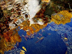 Reflections in a Fountain (Maureclaire) Tags: blue autumn autumnfoliage water fountain leaves reflections ma gold leaf october herbst herfst el autumnleaves otoo  autunno haust  outono hst syksy autumncolor podzim hsten westernma musim sonbahar jesen efterr sz lautomne  turnersfallsma  gugur jesieni   jeseni fountainreflections peskeomskutpark