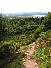 steps (ruminatrix) Tags: scotland balmaha conichill scotlandwalks conichillwalk