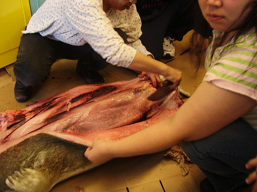 Eskimo Food- Butchering a seal