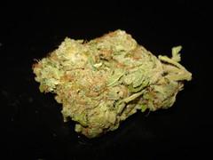Desconocida2 (jhonycogollo) Tags: cannabis marihuana