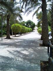 university (qatari star) Tags: university doha qatar