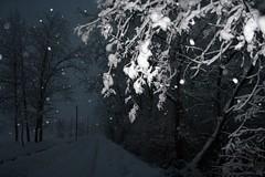Near Robecco sul Naviglio - Verso le frazioni di Robecco (Carlo Pozzoni) Tags: 2005 winter white snow milan ice umbrella landscape march town milano january neve snowfall inverno bianco freddo sul gennaio città naviglio paese robecco