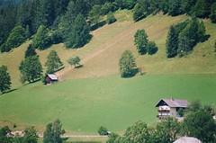 Bad Kleinkirchheim-Dal terrazzo particolare #2