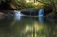 Reflections (Dan Sherman) Tags: oregon creek river waterfall waterloo waterfalls mcdowell dreamjournal oregonwaterfalls blueribbonwinner mcdowellcreekpark mcdowellcreek oregonwaterfall waterloooregon