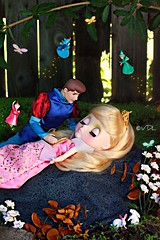 Sleeping Beauty ~ Once upon a dream....