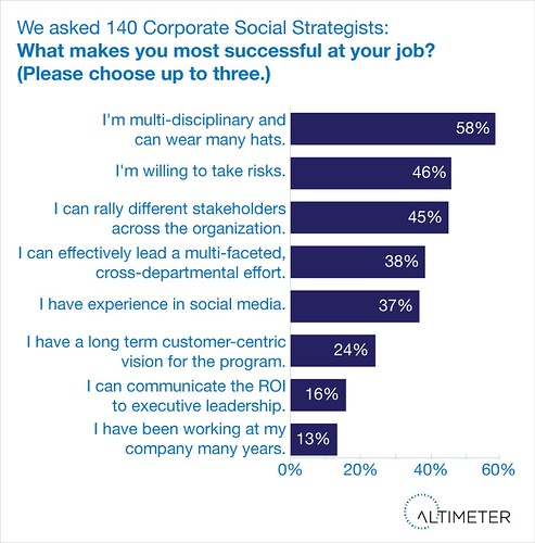Success Skills of the Corporate Social Strategist
