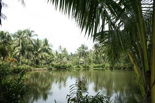 Pulau Ubin - Singapur