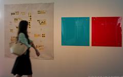 documenta 12 | Zheng Guogu || Gerwald Rockenschaub | Aue-Pavillon
