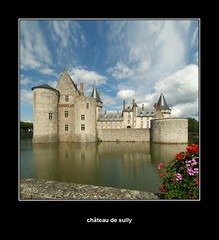 Chteau de Sully-sur-Loire (Bazalai) Tags: france castle sully loirevalley chteau 2007 middleage novideo summerholidays loiret valdeloire sullysurloire anawesomeshot ultimateshot mariusvasiliu terradesign bazalai leuropepittoresque