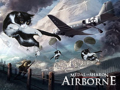 Medal of Sharon: Airborne (L.Lukatsky) Tags: world blue sky game cute art ariel branco illustration cat photoshop manipulated plane poster airplane soldier fire photo jump artwork marine kitten war smoke bonito rifle kitty honor sharon preto cutie medal falling lindo tuxedo gato hero strong filme avio naval airborne fofo jogo cartaz spielberg forte soldado gatinho parachute heri masculo fuzileiro