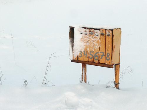 pasta kaste