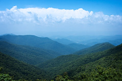 Stop and enjoy the beauty that surrounds you. (KimFearheiley) Tags: mountains northcarolina mtmitchell highestpointeastofthemississippiriver thehighestpeak 6684ft