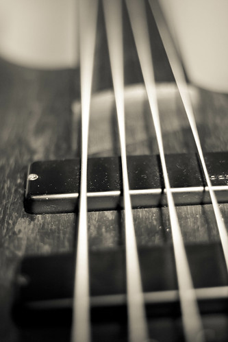 Study of a Fretless Bass