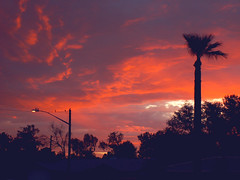 Sunrise in Phoenix, After a Monsoon