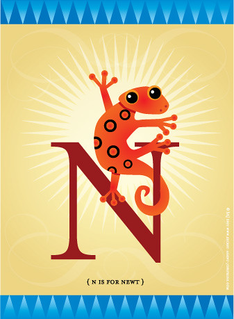N is for Newt!