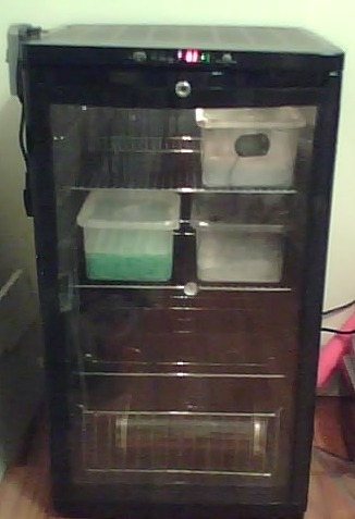 Your Incubator Reviews And Pics Reptile Forums