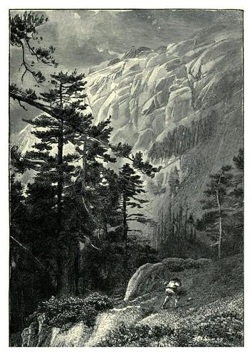 011-En el bosque de Aïtone