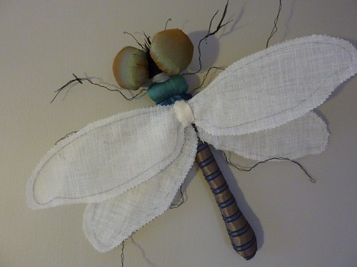 """Dragonfly • <a style=""""font-size:0.8em;"""" href=""""http://www.flickr.com/photos/35733879@N02/5151334704/"""" target=""""_blank"""">View on Flickr</a>"""