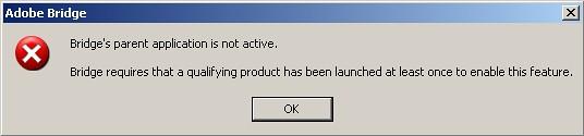 Bridge's parent application is not active.