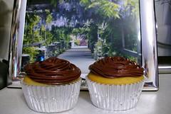 cupcake sourcreamchocolateicing buttermilkbirthdaycake